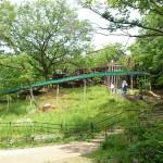 都会と自然が一緒に楽しめる!千里中央駅と公園がお薦め!