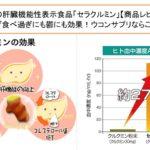 世界初の肝臓機能性表示食品「セラクルミン」【商品レビュー】飲み過ぎ食べ過ぎにも鬱にも効果!ウコンサプリならこれ!