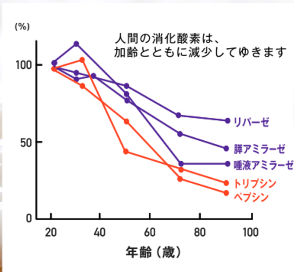 %e9%85%b5%e7%b4%a0%e5%b9%b4%e9%bd%a2