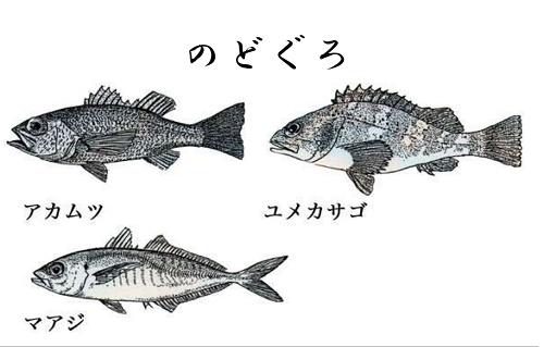 のどぐろと呼ばれる魚たち