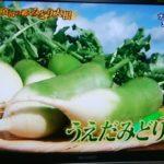 【満天☆青空レストラン】「うえだみどり大根」の甘さと鮮やかな色!生でも揚げても焼いても美味しい!