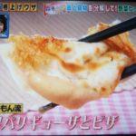 【得する人損する人】家事えもんの冷凍ギョーザアレンジレシピ!粉チーズでパリパリの羽根