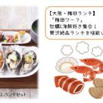 【大阪・梅田ランチ】「梅田ワーフ」牡蠣&海鮮好き集合!贅沢絶品ランチを堪能