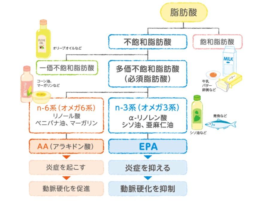 オメガ3系の油の説明