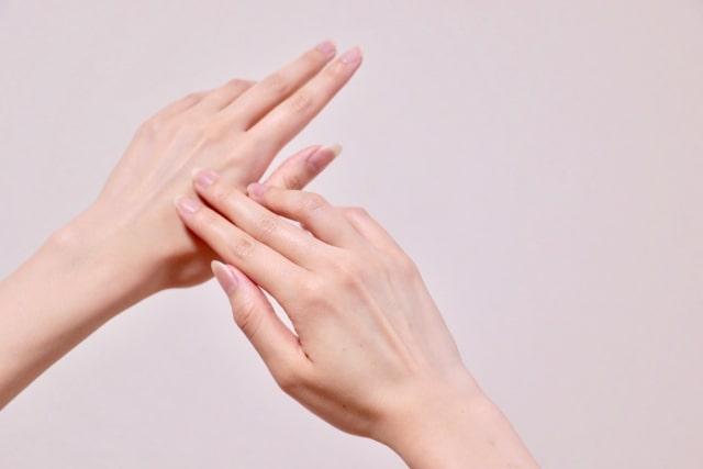 美しい手の甲